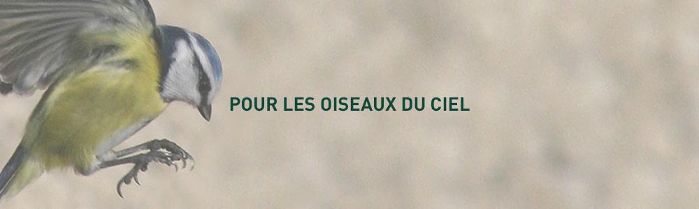 grain-de-vie_40