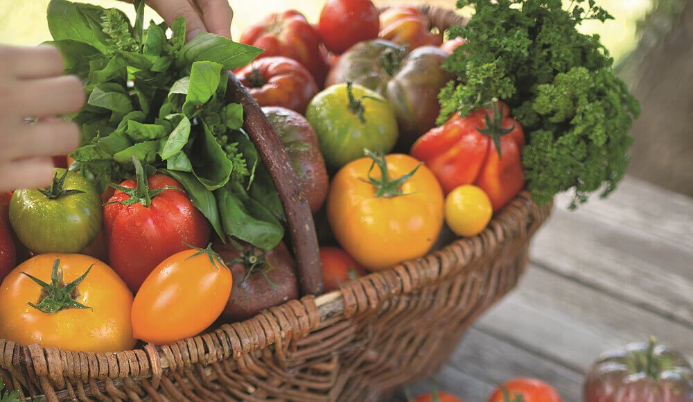 salade-de-tomates-anciennes_0