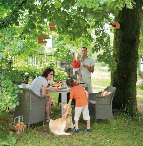 Bien choisir son chien conseil animalerie botanic botanic - Bien choisir son mini four ...