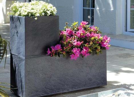 Plantes en bac et pot, extérieur et intérieur