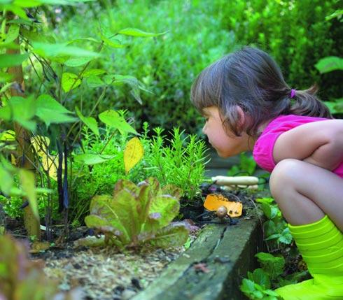 Que semer en mai conseil jardin botanic botanic - Que semer en octobre ...