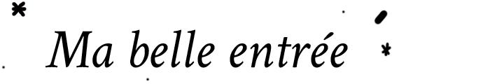 noel-ambiance-exterieur_20
