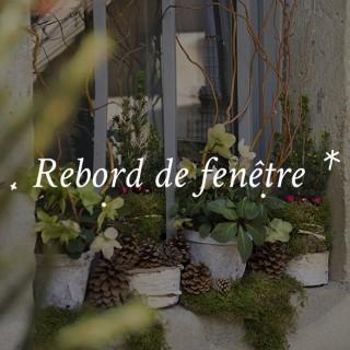 BlocConseil_noel-ambiance-exterieur_rebord-de-fenetre
