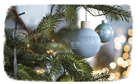 Ambiance de Noël : Nature Bleue