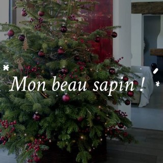 BlocConseil_noel-ambiance-nature-rouge_mon-beau-sapin