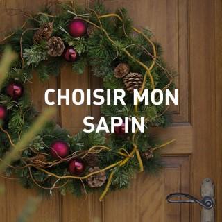 BlocConseil_noel_choisir-mon-sapin