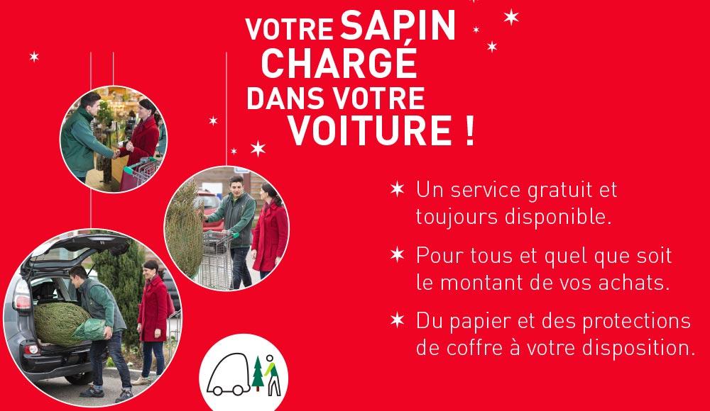 sapins-de-noel_81