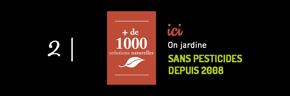 1000-solutions-pour-jardiner-au-naturel_10