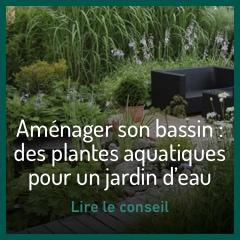 amenager-son-bassin