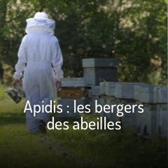 apidis-les-bergers-des-abeilles