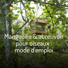 mangeoire-pour-oiseaux