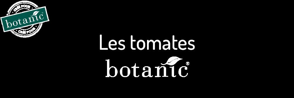aide-au-choix-tomates-bio_10