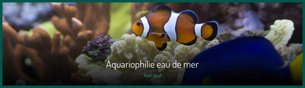 matériel eau de mer