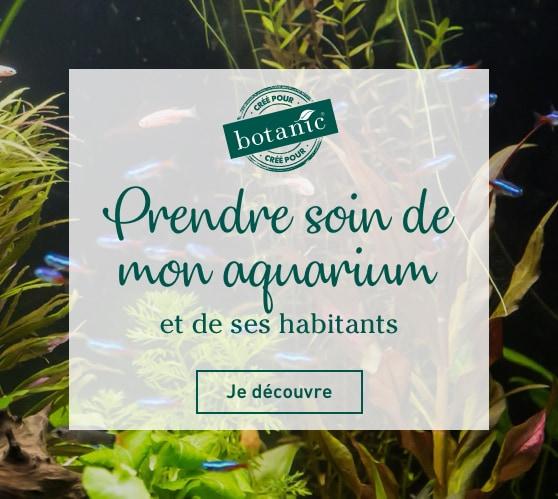 Edito_aquariophilie