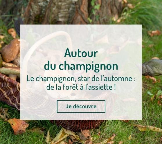 Edito_autour-du-champignon