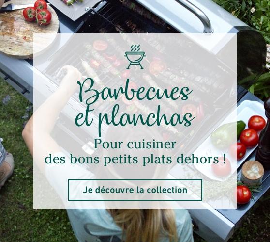 Edito_barbecues-planchas