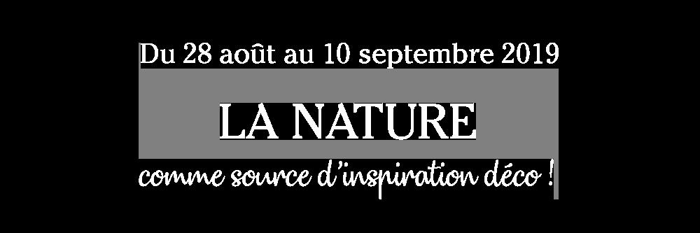 brochure-deco-vegetale_10