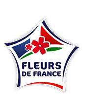 Fleurs de France : un label pour promouvoir le Made in France