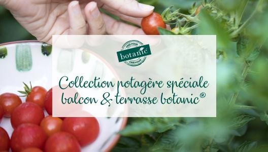 Collection potagère spéciale balcon & terrasse botanic®