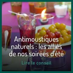 anti-moustiques-naturels-les-allies-de-nos-soirees-d-ete