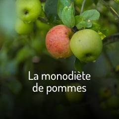 la-monodiete-de-pommes