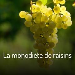 la-monodiete-de-raisins
