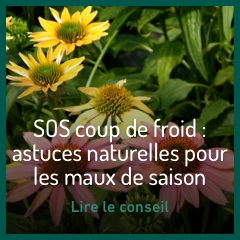 solutions-anti-coup-de-froid