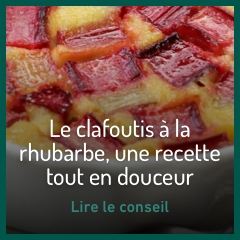 clafoutis-rhubarbe
