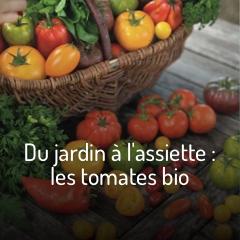 du-jardin-a-l-assiette-les-tomates-bio