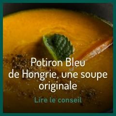 potiron-bleu-de-hongrie