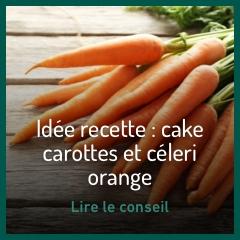 recette-cake-carottes-et-celeri-orange