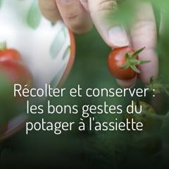 recolter-et-conserver-ses-legumes