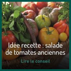 salade-de-tomates-anciennes