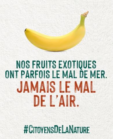 affiches : nos fruits exotiques ne prennent pas l-avion