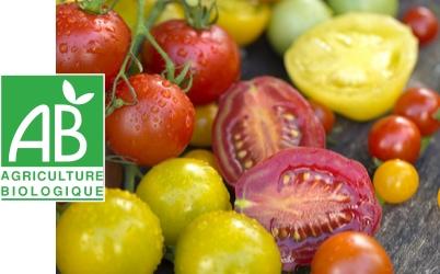 tomates cerises certifiées agriculture biologique