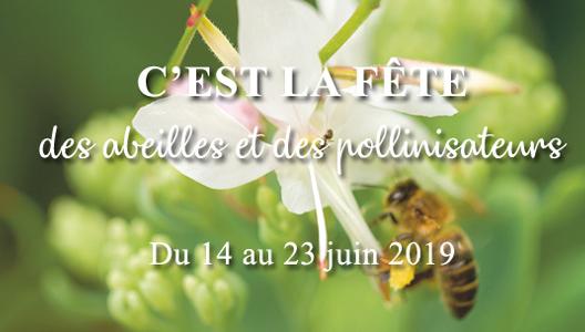 Les abeilles font le buzz chez botanic®