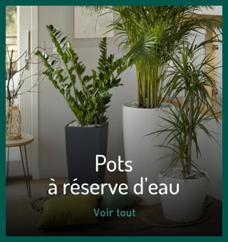 Pots à réserve d'eau
