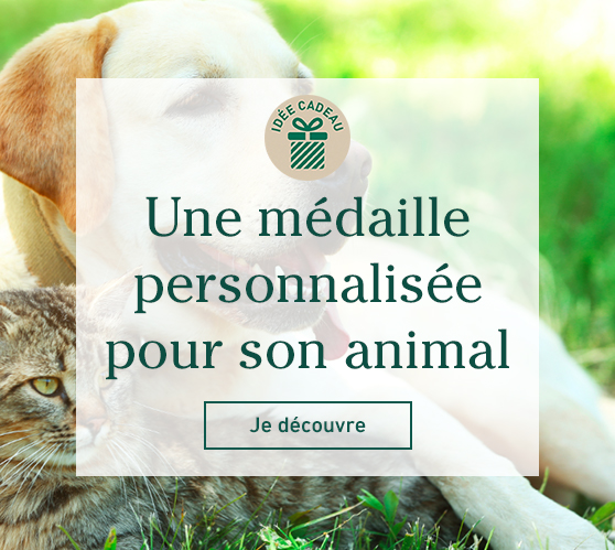Edito_gravure-medailles-animaux
