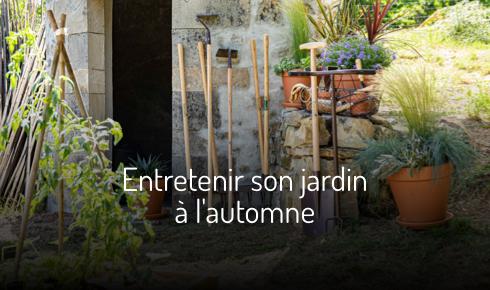 Entretenir son jardin à l'automne