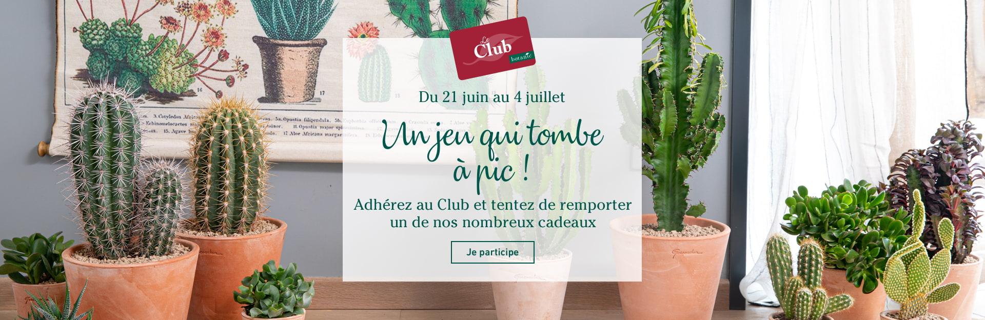 Participez au jeu concours  cactus et plantes grasses