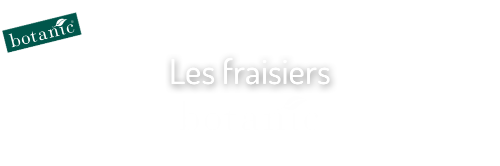 les-fraisiers-botanic_10