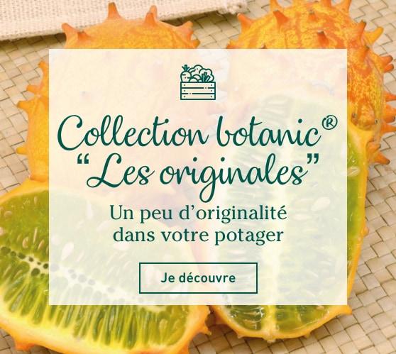 Edito_les-originales-botanic