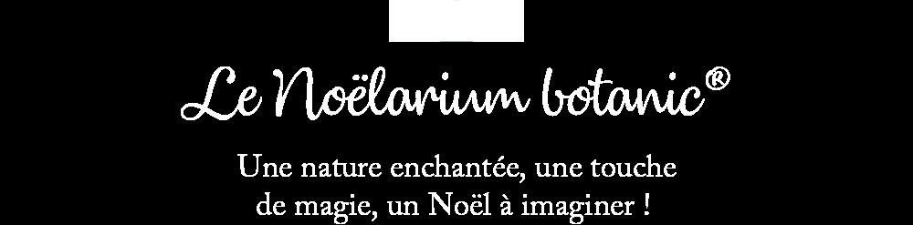 noelariums_10