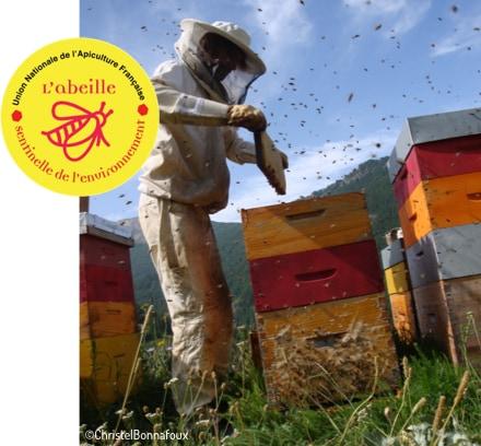 apiculteur autour de ruches