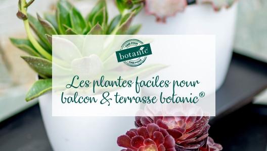 Les plantes faciles pour balcon & terrasse botanic®