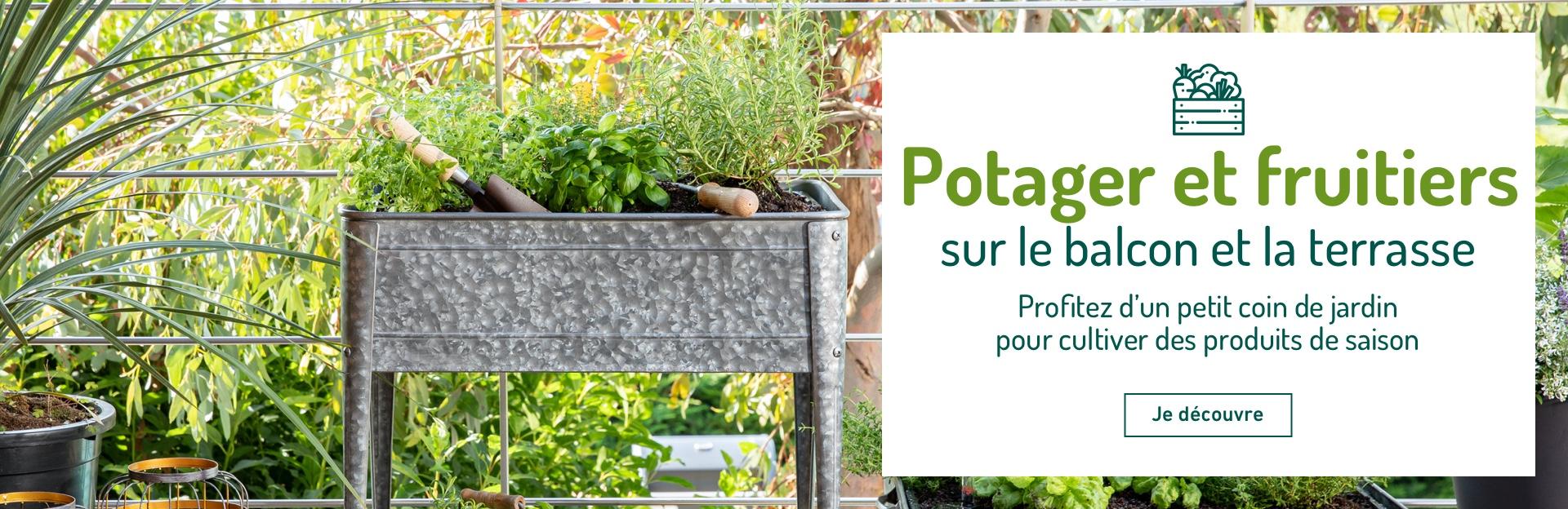 Mon potager et mes fruitiers sur le balcon / la terrasse
