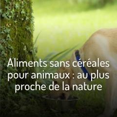 les-aliments-sans-cereales-pour-animaux