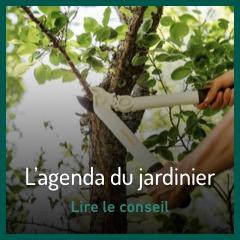 agenda-du-jardinier