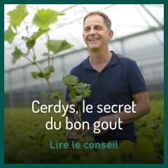 cerdys-le-secret-du-bon-gout
