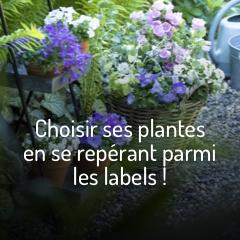 certifications-fleurs-et-plantes